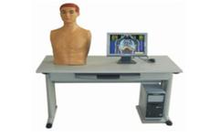 Сетевая интеллектуальная система обучения технике обследования сердечно-легочной системы