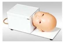 Тренажер венепункции в волосистой части головы у младенцев