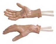 Модель для артроскопии лучезапястного сустава.