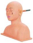 Тренажер  диагностики заболеваний уха