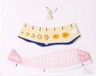 Модель для демонстрации менструального цикла