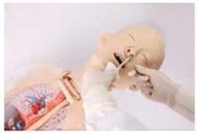 Тренажер промывания желудка